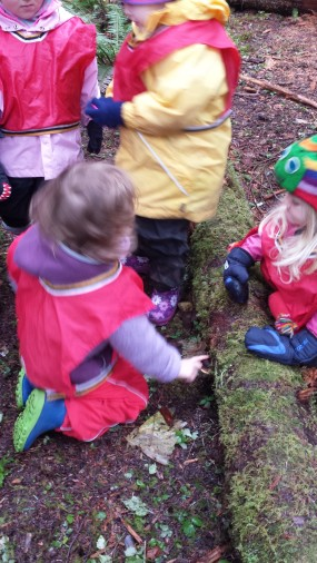 Sharing discoveries of a fungus, also sharing values. Here, the kids are talking to each other about how to be careful to let the fungus continue to grow.