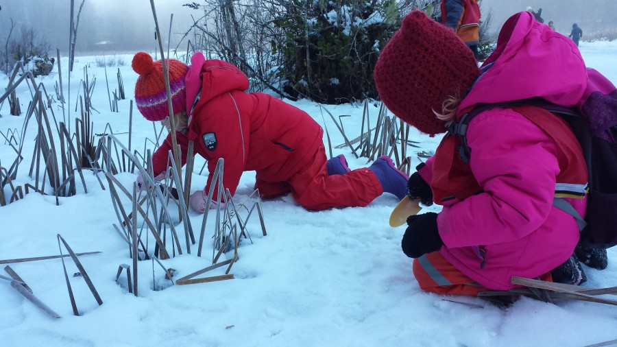 Nova and Poppy are checking out the surface of the pond and using tools to scrape at it. This sensory play can be engaging for a long time especially if they have a theory or goal in mind. I believe they were trying to see beneath the snow to the water underneath!