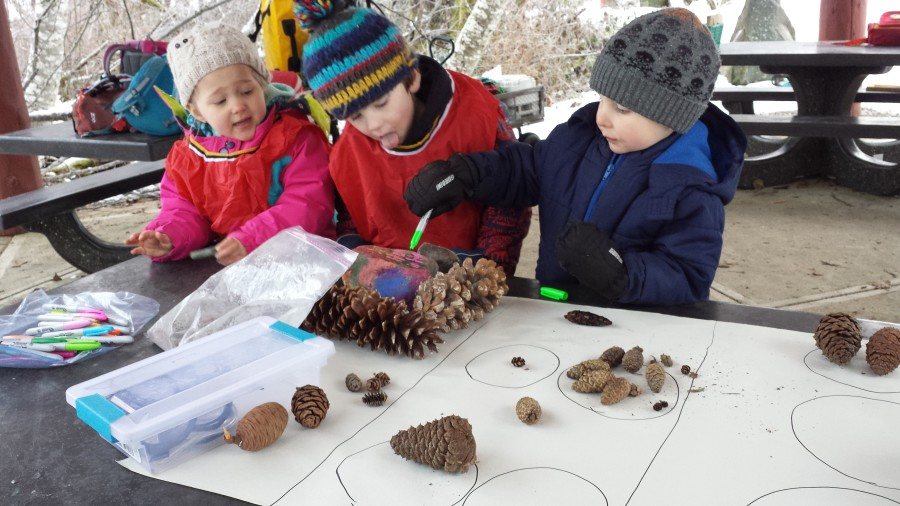 Exploring the pinecones. Torin started sorting them by size with Zachary's help. This builds children's sense of differentiating species and objects by their attributes.