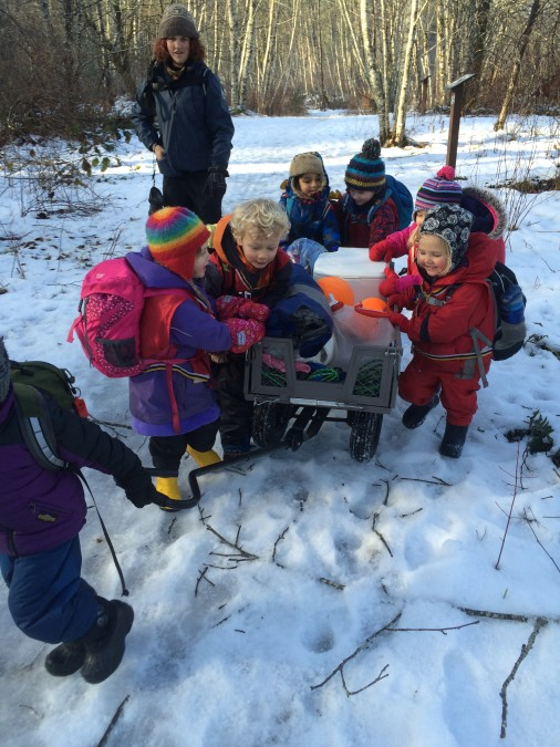 Working together to push the wagon through the slush. They did it! It was quite a feat. Everyone was pushing hard and had a place, including steering!