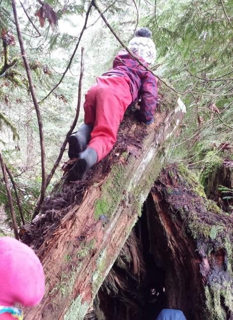 3 - climbing (2)