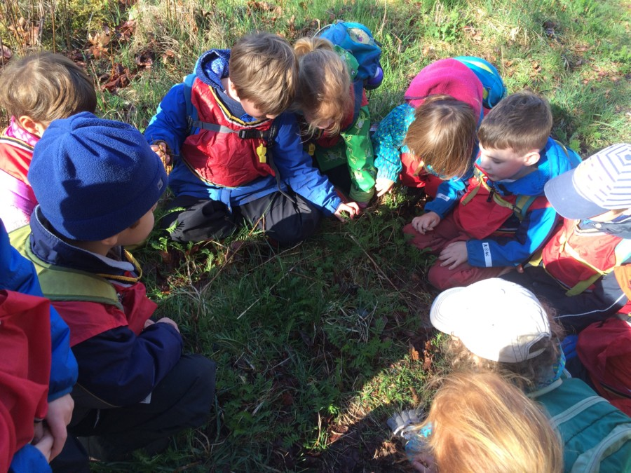They were so excited to find the first snail of the year! Everyone guessed where it had gone for the winter, whether it was a boy or a girl (fact: both) and what it was eating.