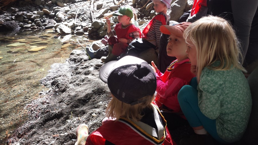 As we watched the fish in the shrinking pool of water the kids guessed what would happen to them if the water disappeared and considered how the fish were 'feeling'. Extending empathy to animals is a common way children can understand themselves and other's emotions and needs better. Kaya and Maeve were insistent on having a quiet moment here, to listen for the sounds of water, flies and to just enjoy this peaceful spot.