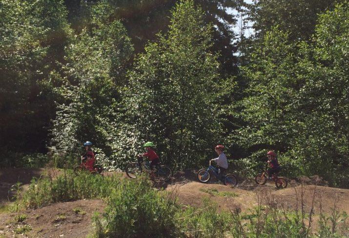 bikes (4)