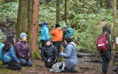 COMOX VALLEY RECORD: Cumberland nature-based preschool hosts forest practitioner course